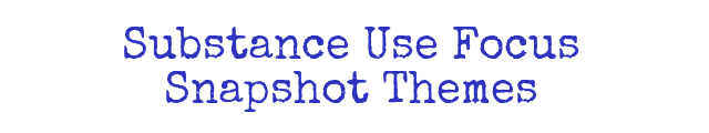 Substance Use Focus Snapshot Themes