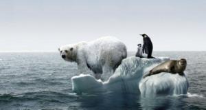 En 2030 daños de cambio climático serán irreversibles: Expertos