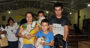 Celebran misa para mascotas
