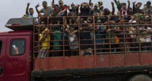 Desaparecen 2 camiones con migrantes en Veracruz