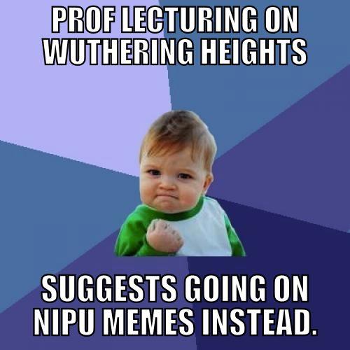 Nipu1