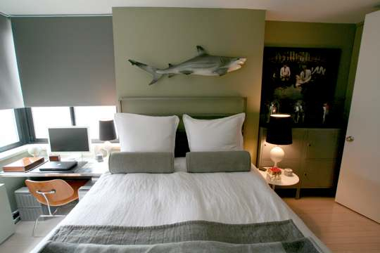 Bedroom Shark