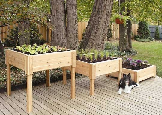 Wood Planters in Three Sizes