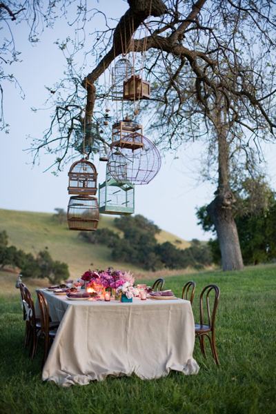 Bird Cages Over a Picnic Table