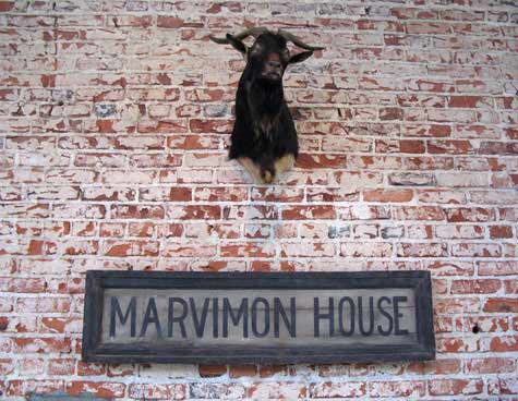 Goat's Head on a Rough Brick Wall