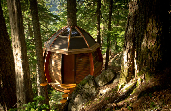 Tree Hut