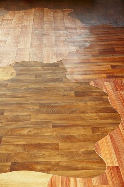 Amoeba Hardwood Floor Patterns