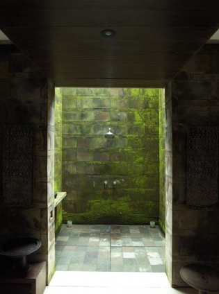 Mossy Outdoor Shower