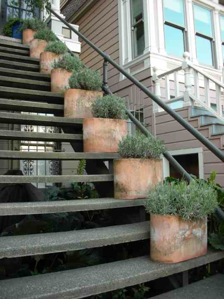 Planters Up the Stairs