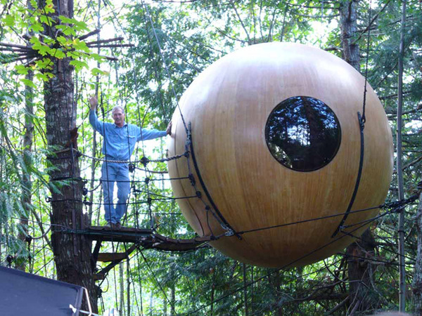 Big Round Tree House