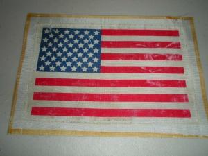 NASA American Flag Beta