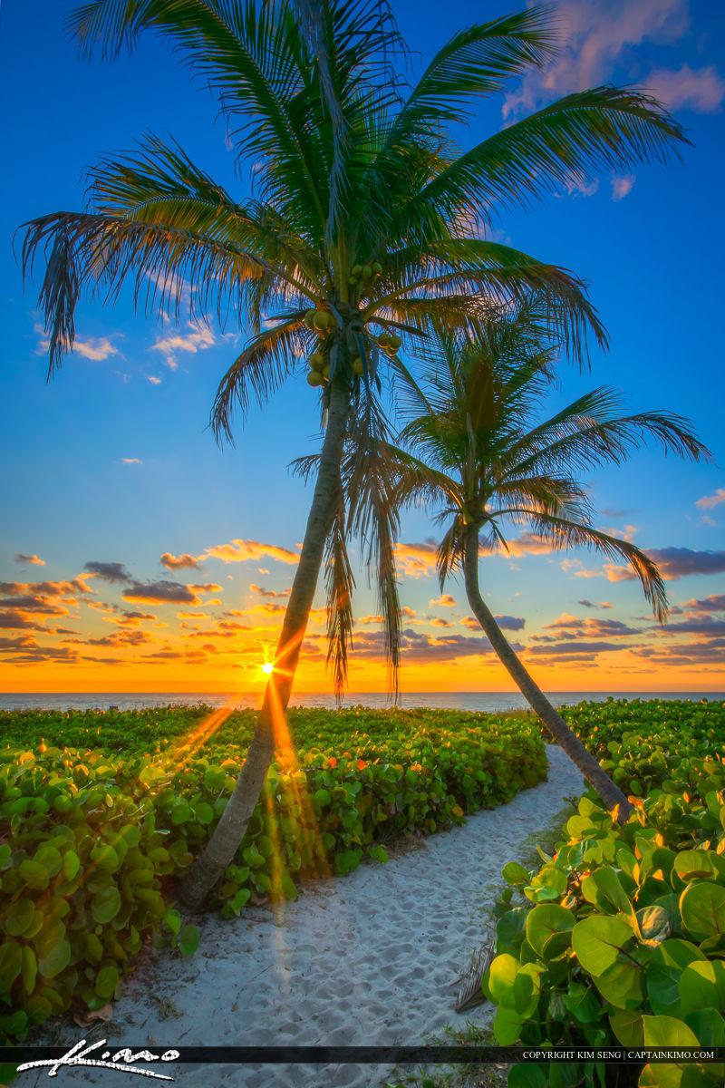 Best Buy In Delray Beach Florida