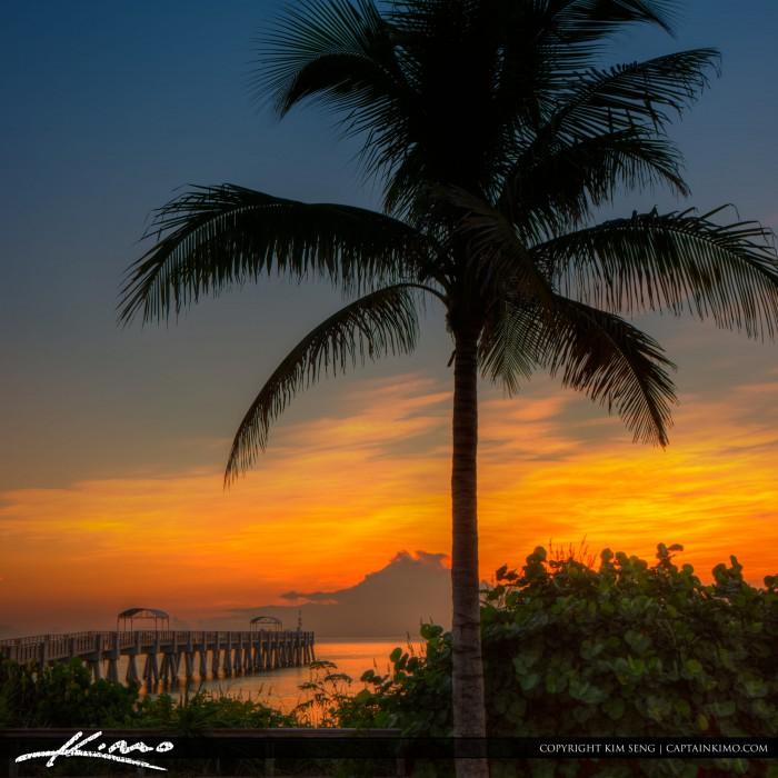 Coconut tree sunrise lake worth pier for Lake worth pier fishing