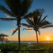 Sunrise from Delray Beach Florida next to the lifeguard tower with some tall coconut palm trees. HDR image created using Topaz and Photomatix software.