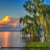 Beautiful Cypress trees at Lake Istokpoga in Highlands County, Florida at Cypress Isle RV Park and Marina. HDR image created using Photomatix and Aurora HDR software.