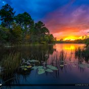Sunset at a small lake in Jupiter Florida at the Abacoa in Palm Beach County. HDR image created using Photomatix and Aurora HDR software.