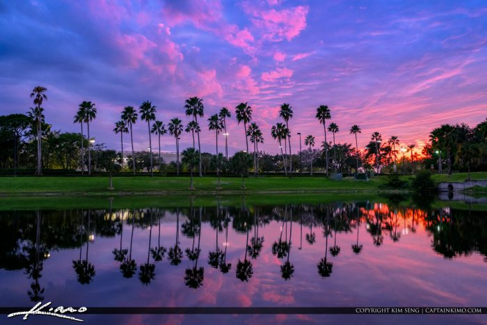Palm trees over lake palm beach gardens florida sunset - Palm beach gardens mall shooting ...