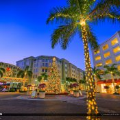 The beautiful Christmas Tree at Harbourside Place in Jupiter Florida during 2016. HDR image created using EasyHDR software and Aurora HDR 2017.