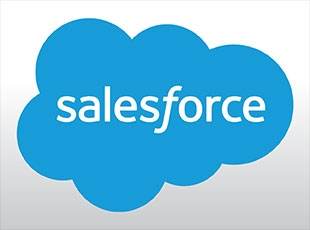 Many agents use the optional Salesforce program to help them manage their customer database.