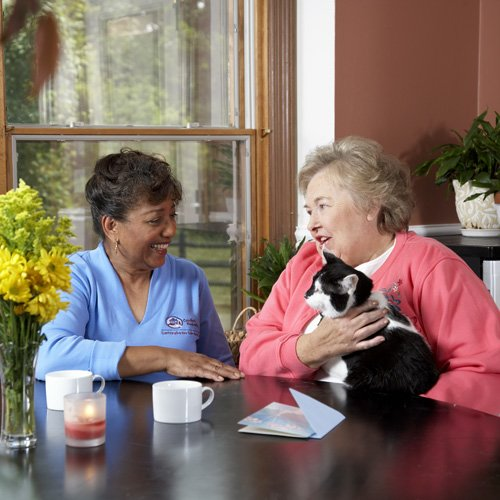 Comfort Keepers of the North Shore - Photo 4 of 9