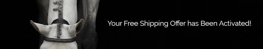 Preferred Customer Free Shipping