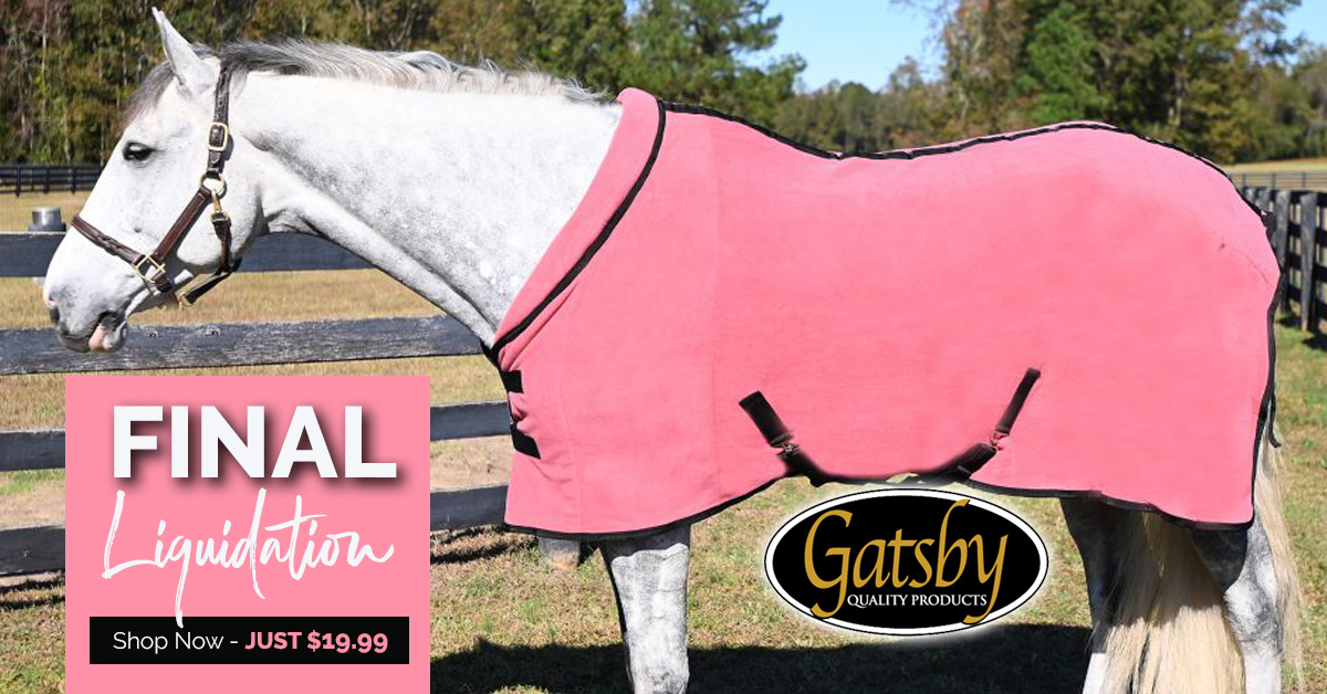 Gatsby Premium Anti-Pilling Fleece Sheet in 7 Colors - 7 Sizes JUST $19.99