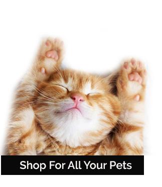Shop All Pets