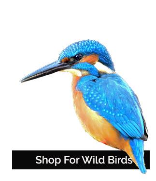 Shop Wildbird