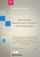 Energia eolica: come organizzare un business plan