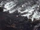Texture acqua