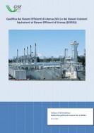 Guida GSE alla qualifica dei Sistemi Efficienti di Utenza (SEU) e dei Sistemi Esistenti Equivalenti ai Sistemi Efficienti di Utenza (SEESEU)