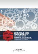 Gli immatricolati ai corsi di laurea ingegneristici nel 2014/15