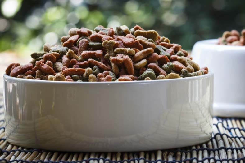 food bowl header