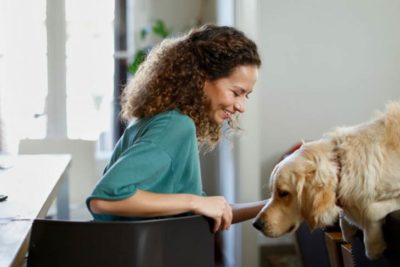Golden Retriever and woman in an apartment
