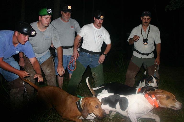 coonhound event