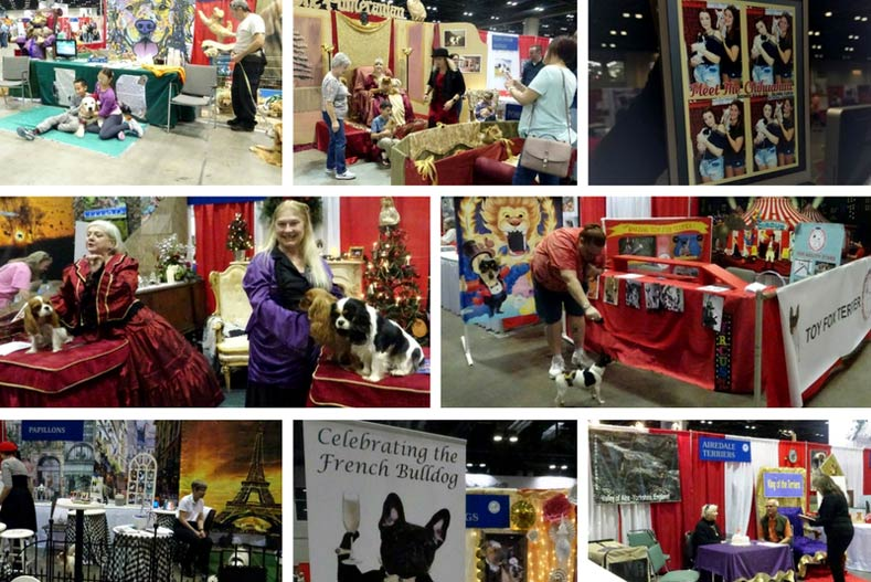 Incredible Booths from Meet the Breeds 2017