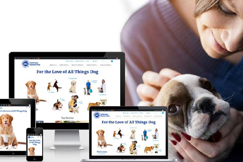 New Site Woman with Frenchie