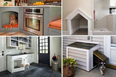 Doghouse Ideas Realtor