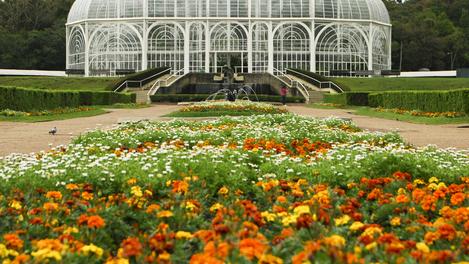 O charmoso Jardim Botânico de Curitiba