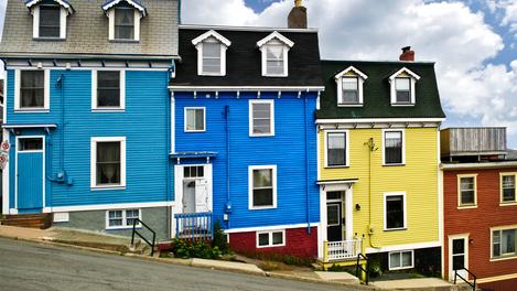 St. John's, Terra Nova