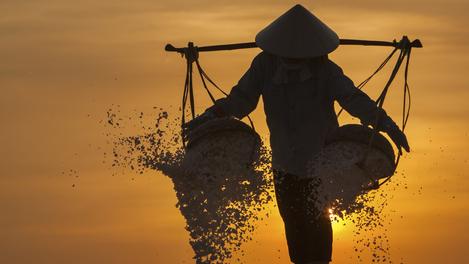 Trabalhador no campo de sal, Vietnã