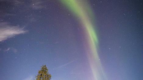 Aurora boreal em Yellowknife