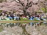 Japão com crianças: dicas e destaques de atrações para os pequenos