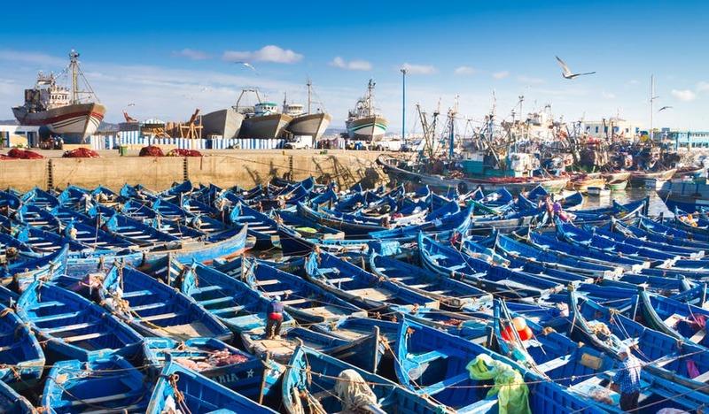 Um estaleiro cheio de barcos de pesca azuis, em Essaouira
