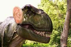 Dinosaurs with Ears