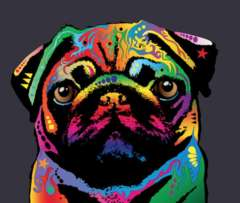 EdgarTheRainbowPug