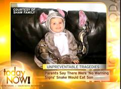 Onion Story about Pet Snake