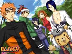Naruto and Bleach fangroup