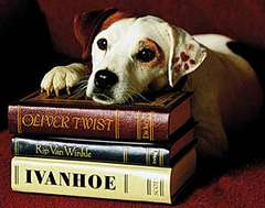 Wishbone TV Series