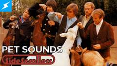 Pet Sounds | SideScrollers Extended Cut